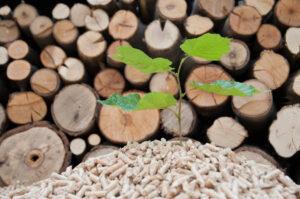 Biobränsle som tex pellets är en s k förnyelsebar energikälla, en ren naturprodukt som ingår i naturens kretslop. EMT Vatten och Värme har mycket goda kunskaper om både flispannor, pelletspannor och vedpannor!