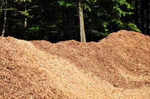 Biobränsle som tex ved, flis och pellets är en s k förnyelsebar energikälla, en ren naturprodukt som ingår i naturens kretslopp. Sett till bränslepriset är flis oftast det billigaste bränslet att elda, och då många större skogsägare har tillgång till flis som en restprodukt så blir detta en oslagbar lösning rent ekonomiskt.